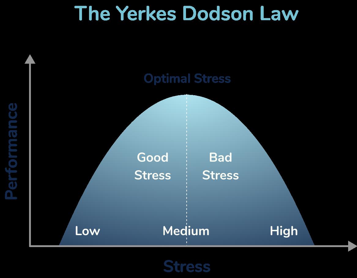 The Yerkes Dodson Law
